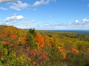 Fall picture from Hawk's Ridge, Duluth, MN