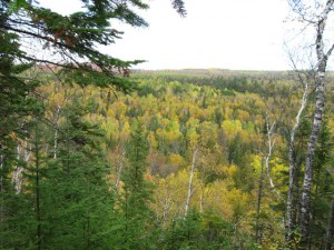 Fall Picture from Lookout Mountain, Cascade River State Park