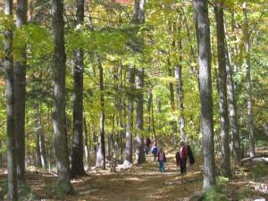Hiking Trails Peninsula State Park