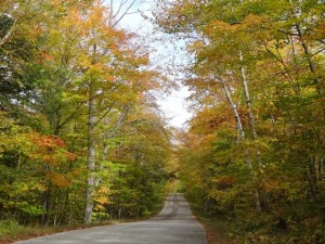 Door County Fall Color Pictures Scenic Pathways