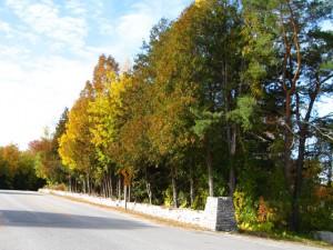 murphy county park door county