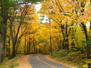 Fall color drive in Wisconsin's St. Croix Interstate Park