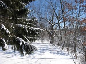 Upper Peninsula Michigan Winter