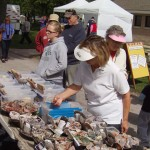 Lake Superior Agate Festival