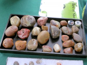 Oiled Lake Superior Agates