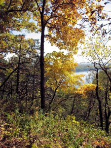 Effigy Mounds Park Fall Color Scene