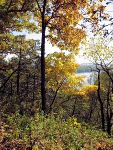 Effigy Mounds Park Fall Color Scene