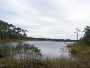 coastal dune lake