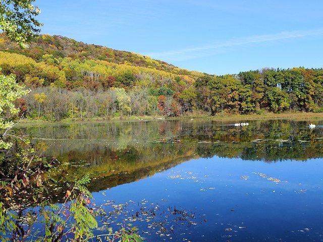 Reick's Lake Park