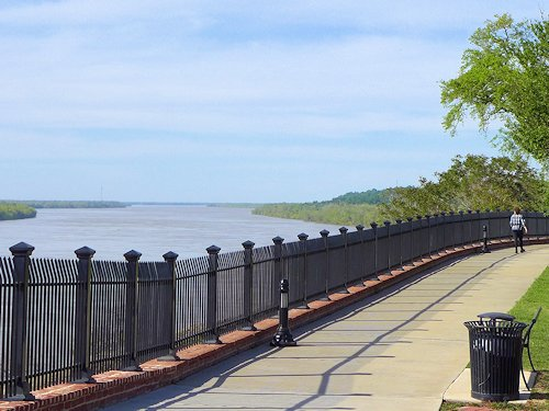 Natchez Bluff Walk overlooking the Mississippi