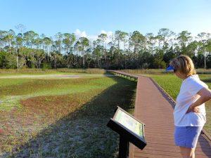 Cedar Keys Wildlife Refuge Nature Trails