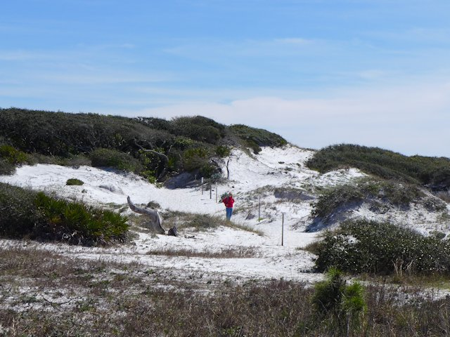 grayton beach nature trail