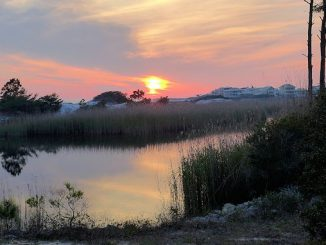 grayton beach sunset