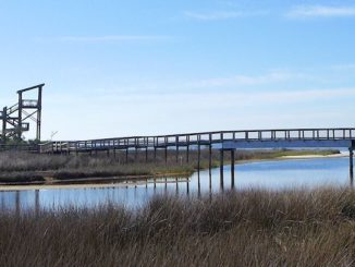 big lagoon state park boardwalk
