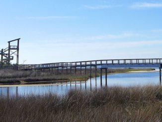 big lagoon state park boardwalk