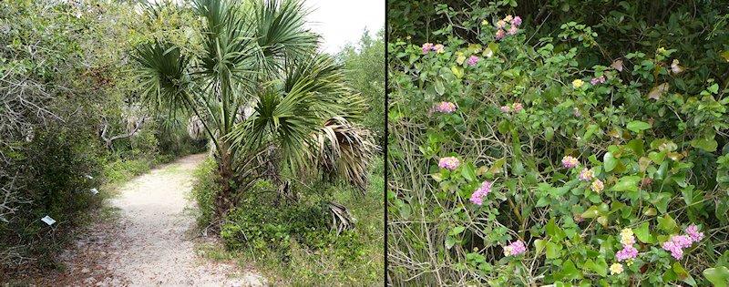 railroad trestle nature trail