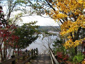 mississippi palisades park overlook