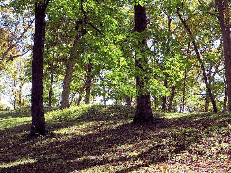 Effigy Mounds at Effigy Mounds National Monument Park