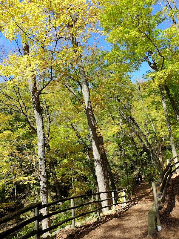 Effigy Mounds Trail