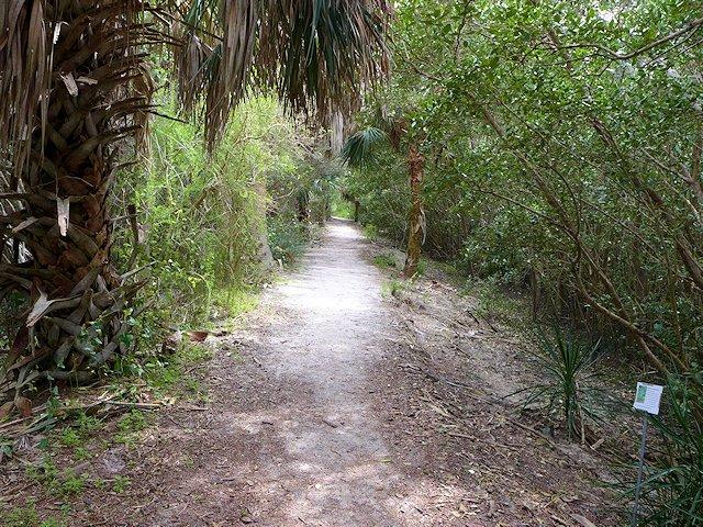 Cedar Key Railroad Trestle Trail