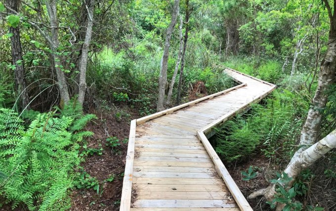 gulf shores state park hiking trails